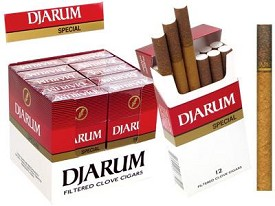 Djarum Filtered Clove Special